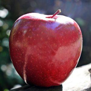 Присушное яблоко