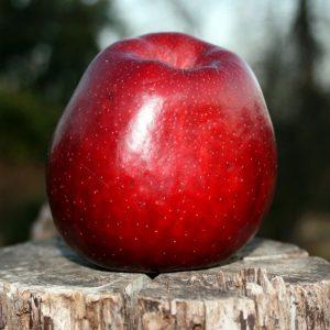 Яблоко для присухи