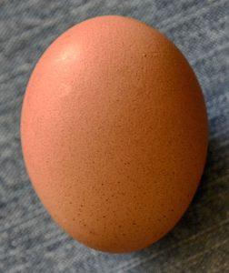 Яйцо для выкатывания негатива